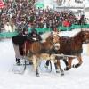 魁北克冬季狂欢节
