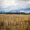 冰川国家公园 Glacier National Park
