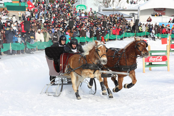 The-dog-sled-derby