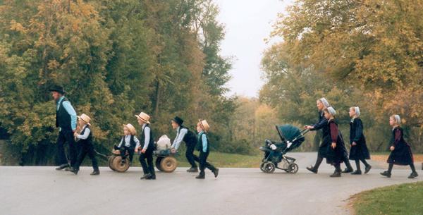 阿米什人 Amish